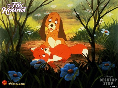The-Fox-and-the-Hound-wallpaper-the-fox-and-the-hound-12358716-800-600